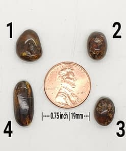 amber cabochons group