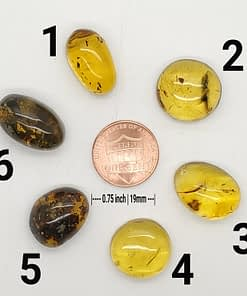 amber cabochons group6