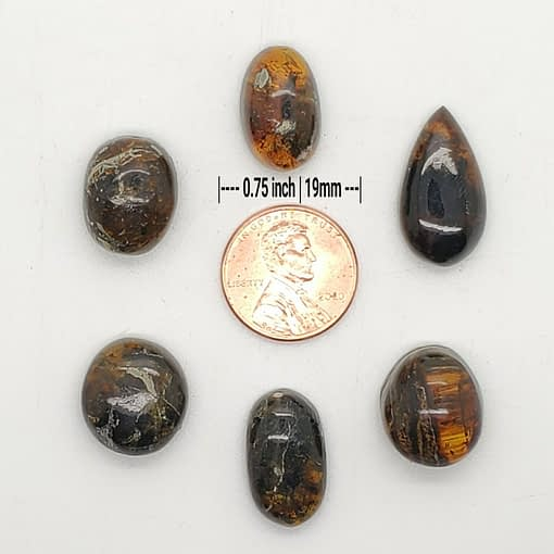 Amber Cabochon Group