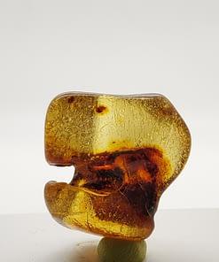 Baltic Amber Specimen