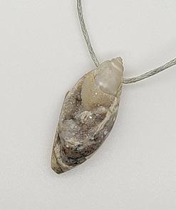 spiralite pendant fossil jewelry